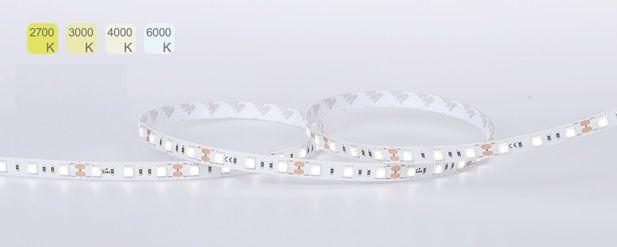 Kit: 5 Metre Reel LED 5050 Strip Light, Single Colour + 100W LED Driver
