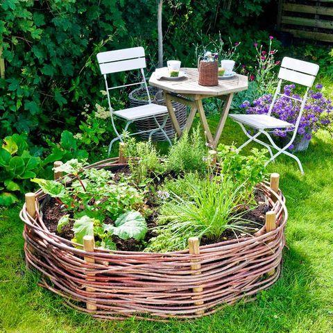 Fläta en upphöjd odlingsbädd av pil till örterna. Plantorna stortrivs i den varma jorden och det är bekvämt att knipsa av kryddor till maten.
