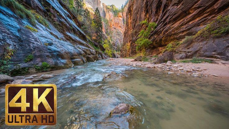 Zion National Park Autumn K Nature Documentary Film