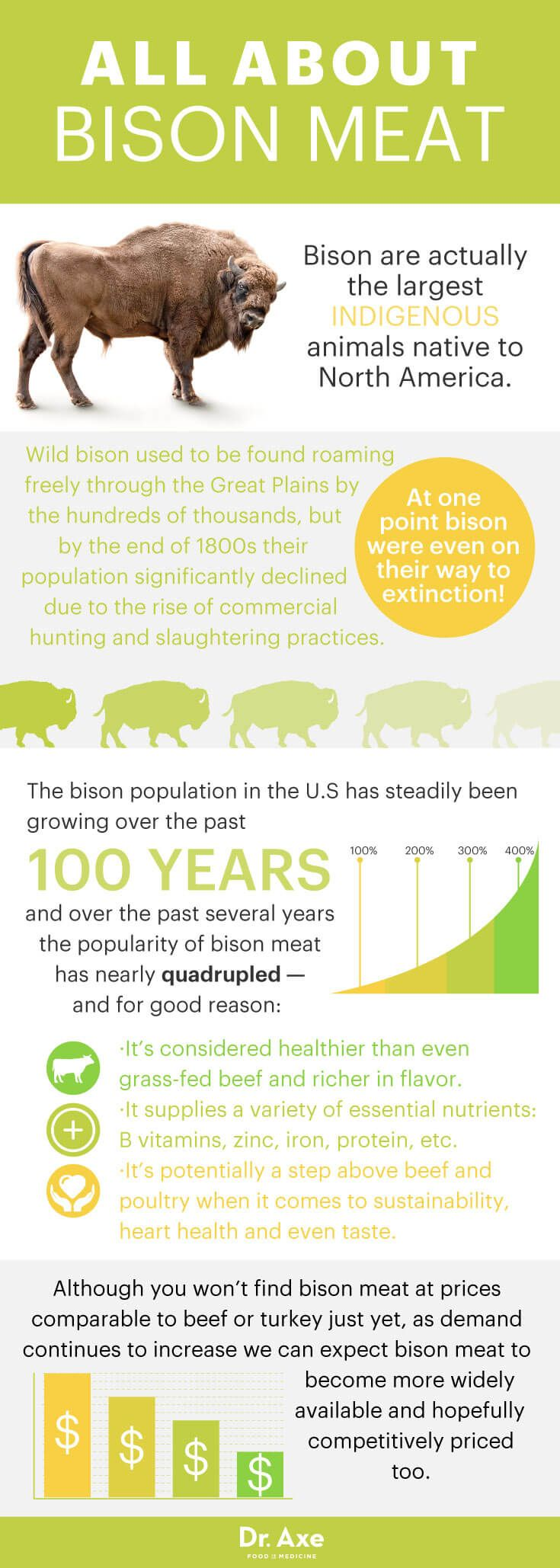 All about bison meat - Dr. Axe