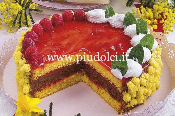 Torta-farcita-cioccolato-lamponi