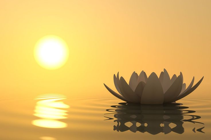 5 Ways Meditation Will Reduce Stress & Help You Find Inner Peace