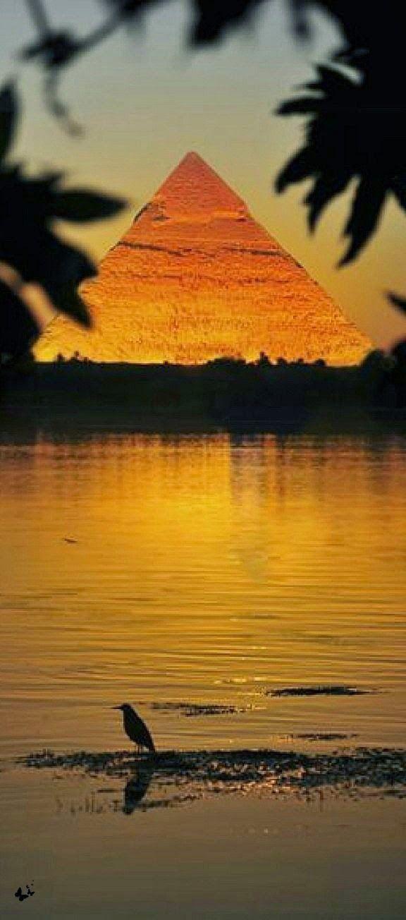 The Nile and Pyramid, Cairo, Egypt | Nice Collection.