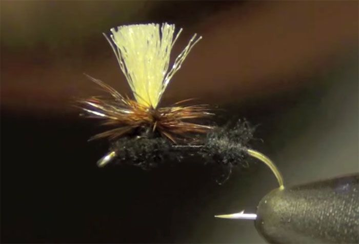 Ants are among the most important summertime fly patterns for both trout and panfish.When the sun is high and nothing is rising, oftentimes aBlack or Cinnamon Ant can save the day. One of. . .Read More »