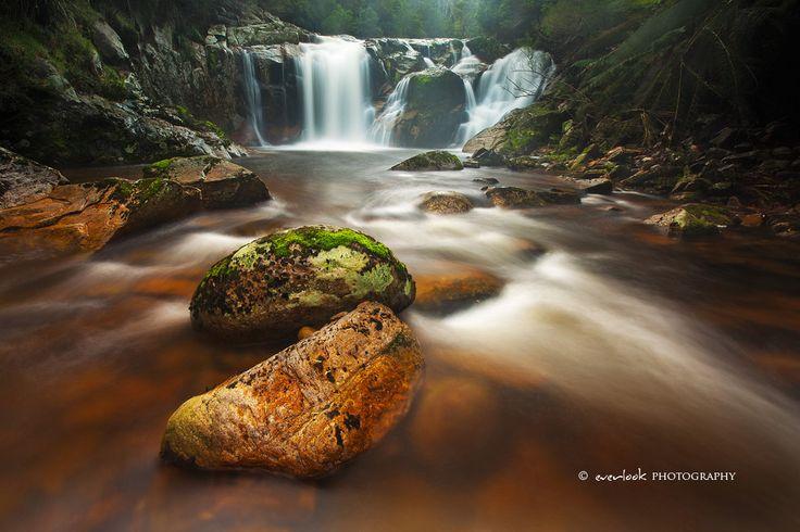 Hall's Falls, Tasmania
