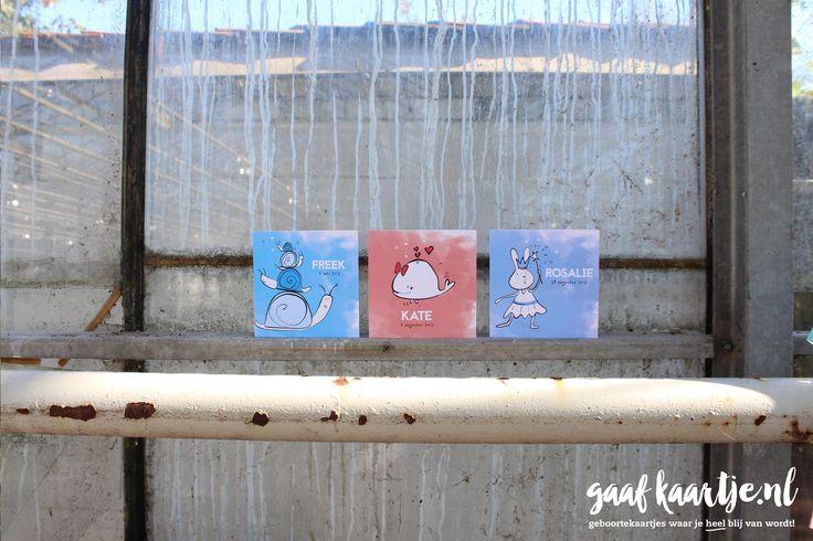 Geboortekaarten | unieke geboortekaartjes | Geboortekaart | Gaafkaartje | collectie 1 | acryl | tekening | illustratie | slakken | walvis | konijn