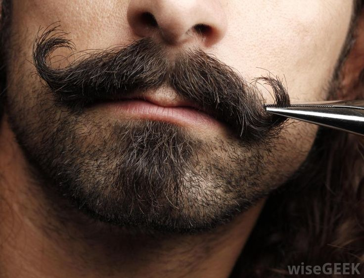 Amazing mustaches are the one of the many positive things in life
