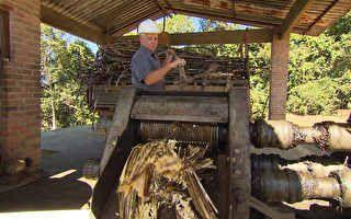 Cachaça artesanal em Antônio Carlos é feita como antigamente, em alambique de cobre