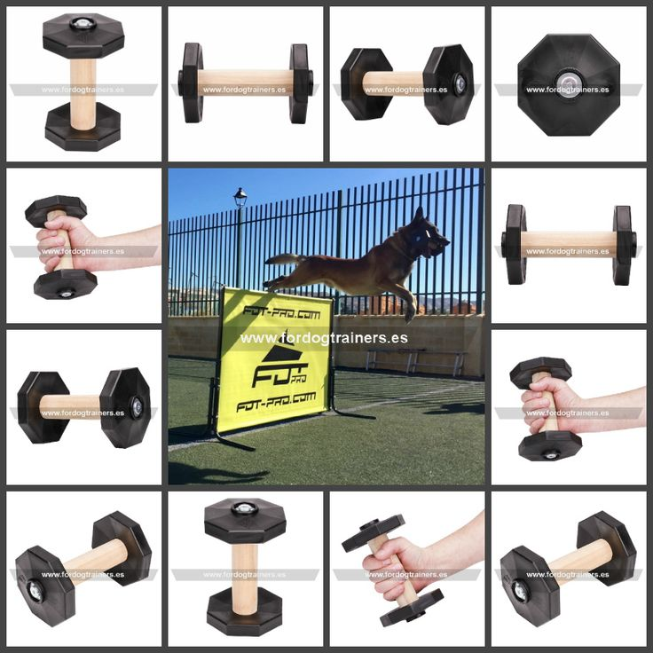 Mancuerna de madera para perros, disponible en varios colores, medidas y tamaños para un adiestramiento perfecto de Schutzhund, RCI y Mondiorong. Ver precios https://www.fordogtrainers.es/index.php/equipos/aport-mordedor-de-madera-para-perros-traer-detail #mancuernaparaperros #mancuernademadera #pesaparaperros #adiestramientocanino #adiestramientodeperros #fordogtrainers_espana
