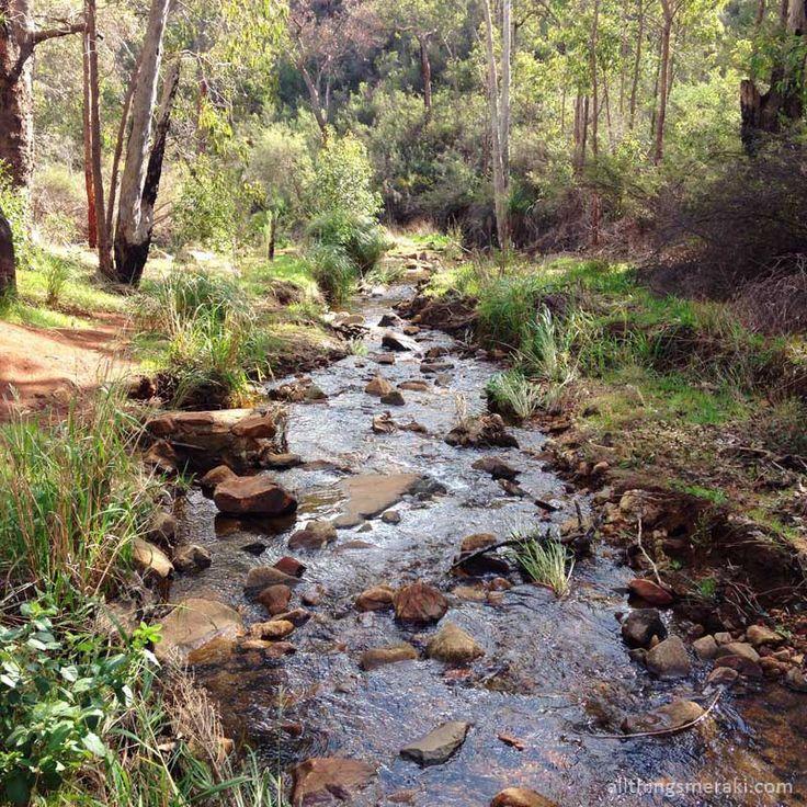 Bush walking at Lesmurdie Falls National Park in Perth Hills