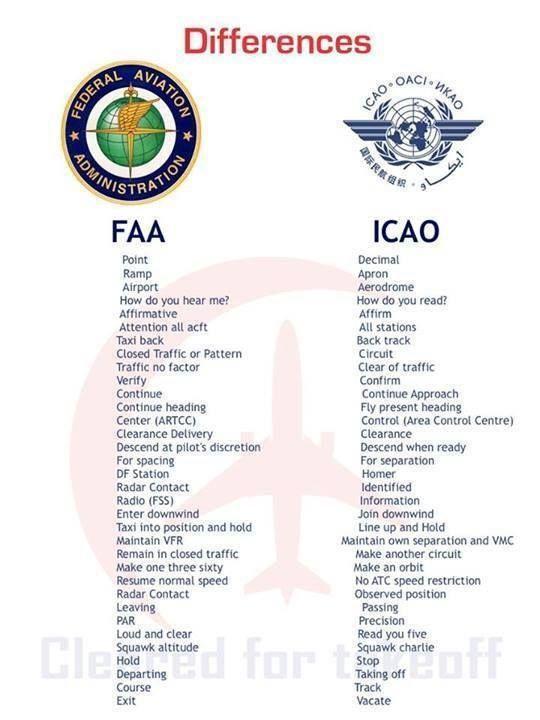 cadet pilot sample resume