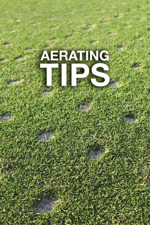 Lawn Aeration: Tips on Aerating Your Lawn by Troy-Bilt®