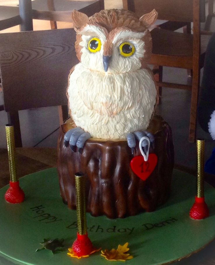9 best Animal Themed Cakes images on Pinterest Themed cakes Cake