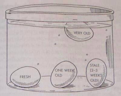Are my eggs still good?