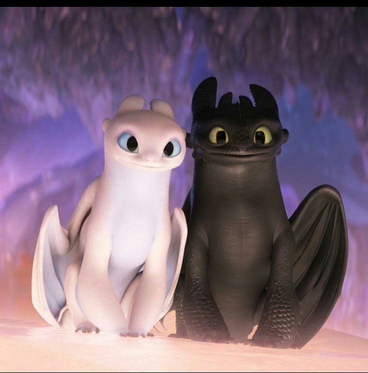 Toothless and Light Fury Movies in 2019 Pinterest