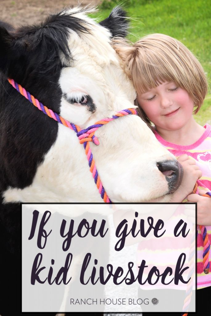 If You Give a Kid Livestock... - Ranch House Designs, Inc.
