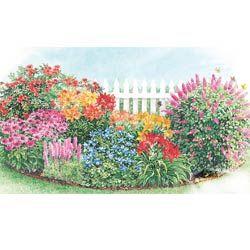 Delightful Butterfly U0026 Hummingbird Garden. Idea For Next Year