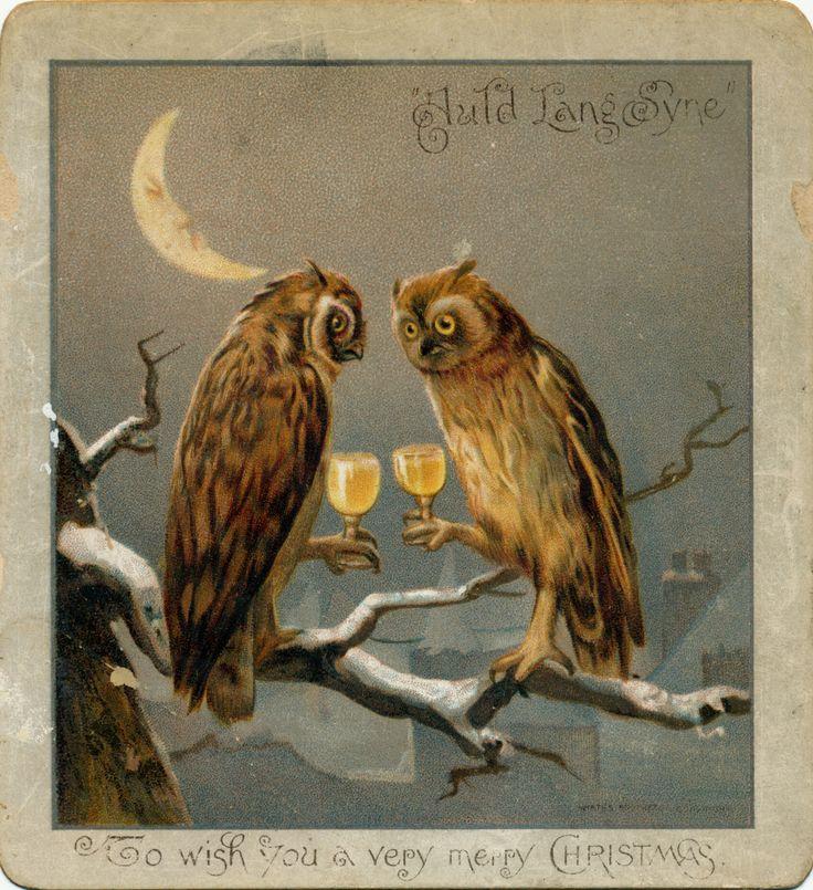 / owl new year toast /