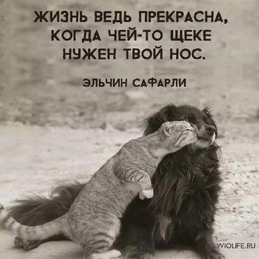 ОБЩЕНИЕ улучшать жизнь друг друга, наполнять приятными ощущениями, взаимообогащающие (духовно, но можно и плюс материально) связи. Дружба - как любовь, только без секса.