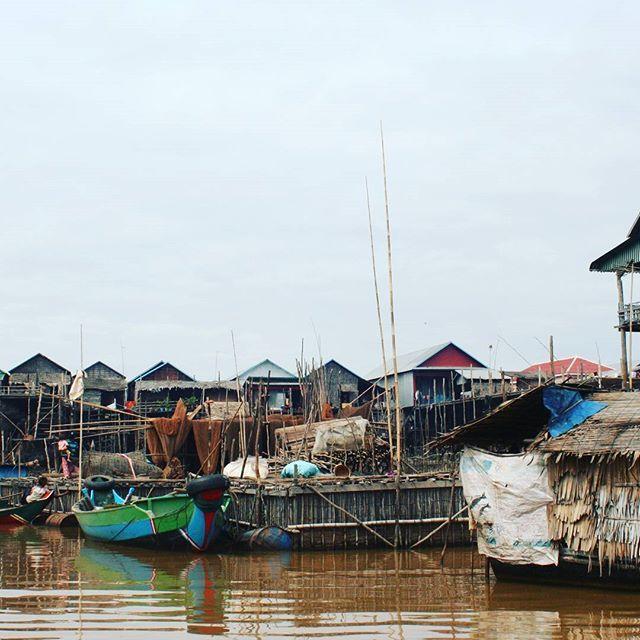 【plagepure】さんのInstagramをピンしています。 《#floatingforest #cambodia #visit #trip #river #life #캄보디아 #여행 #강 #カンボジア #旅行 #川 #フローチング #森 #生活》
