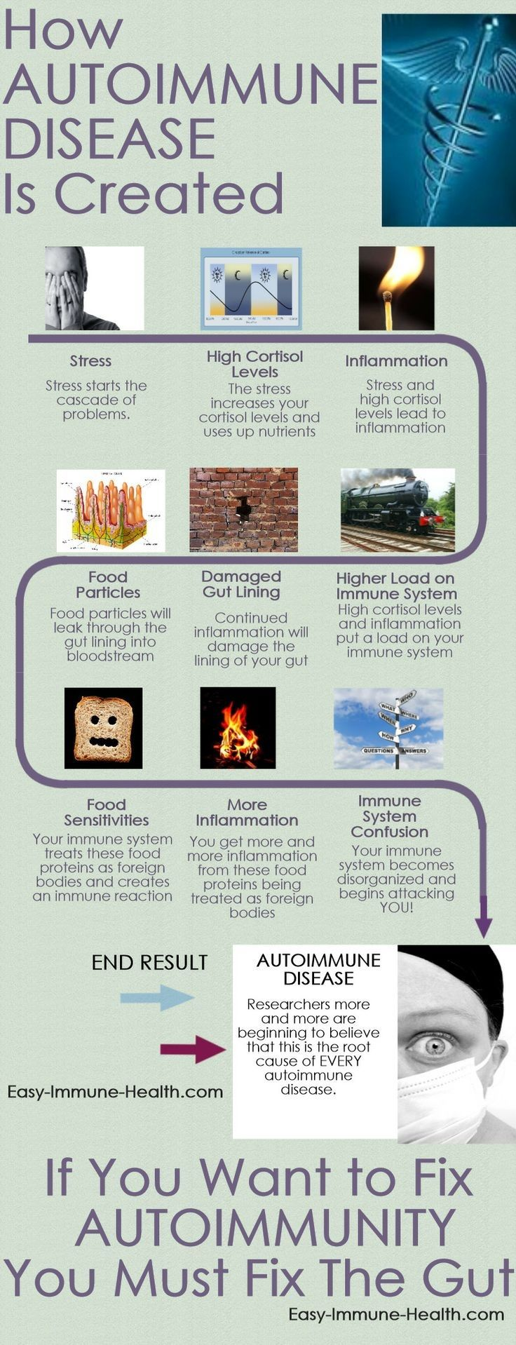 How Autoimmune Disease is Created