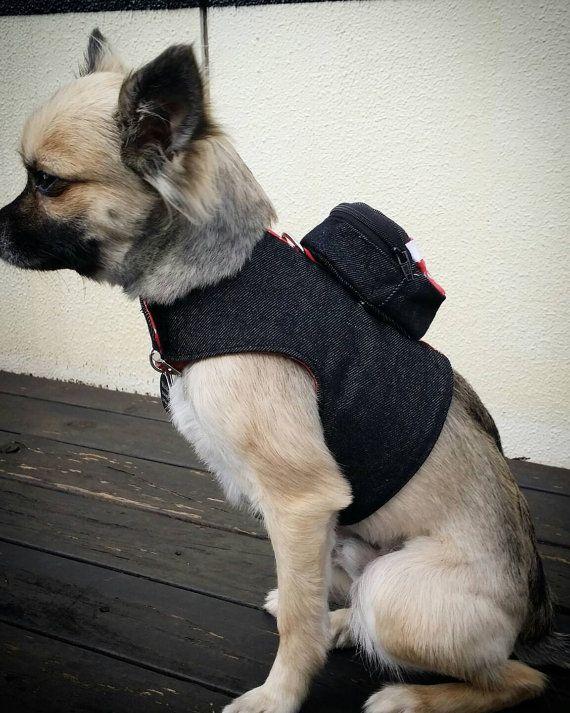 1000 id es sur le th me manteau chien sur pinterest manteau pour chien accessoires animaux et. Black Bedroom Furniture Sets. Home Design Ideas