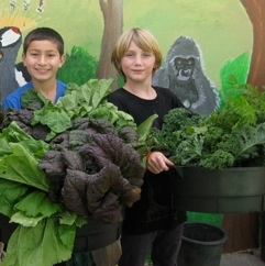 Nourish is an educational initiative designed to open a meaningful conversation about #food and #sustainability, particularly in #schools and communities