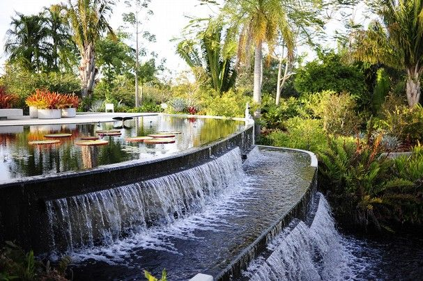 399 best images about fort myers cape coral and the - Botanical gardens naples florida ...