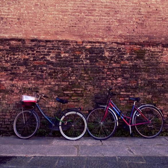 Every bike has a story - Bologna - Piazza Verdi