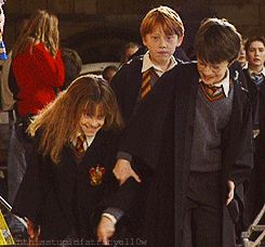 Harry trying to strangle Hermione while she giggles and Ron looks on: