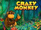 Crazy Monkey (Сумасшедшая Обезьяна) онлайн - игровой автомат Крейзи Манки  http://azartnayaigra.com/avtomaty-besplatno/crazy-monkey  Один из самых популярных автоматов - игровой автомат Crazy Monkey