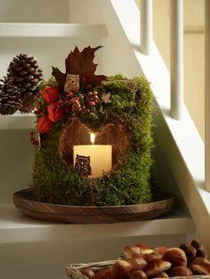 Jetzt wird es richtig gemütlich! Mit diesem wunderschönen Windlicht mit Moos und allerlei herbstlichen Gaben der Natur zieht die Gemütlichkeit auch bei Ihnen zu Hause ein. Die Step by Step-Anleitung finden Sie hier: