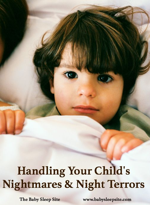 A baby or toddler can experience a nightmare or a night terror which can be scary for the child and the parent. Tips for how to handle a nightmare with your baby or toddler.