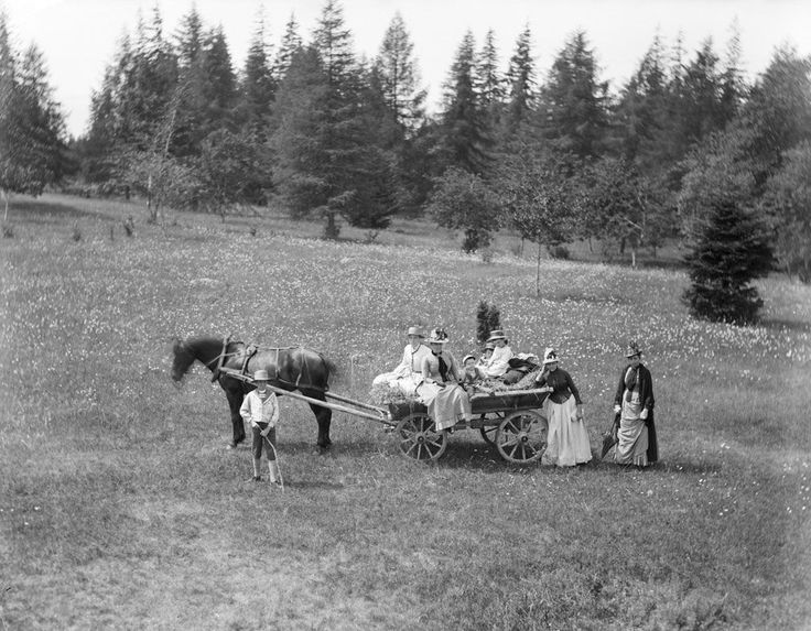 Midsummer Day excursion at Svartsvall in Omberg mountain area. People with horse and carriage. Carl Curman. 1880s.