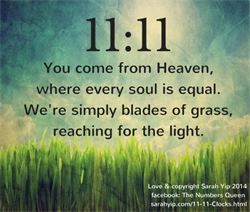 Sarah Yip 11:11 Clocks Numerology You Come From Heaven