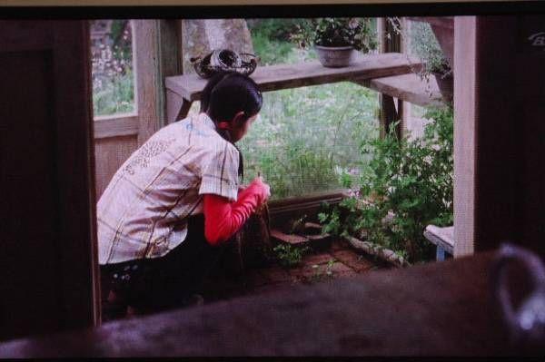 前回に引き続き『西の魔女が死んだ』の話題を。。。。。ハーブを生活に取り入れているこの作品は、私のお気に入り映画のひとつとなっています。。。このお家があばあさんのお家です♪森の中にポッンとたたずむこのお家にワクワクした私です♪ダイニングテーブルから見渡せる景色は心地の良い風が吹きぬけています。。。そのとき食べる料理だけが置かれるテーブルはスッキリしています。そういゆう当たり前の事ってなかなか実は難しい事ですが、気持ちのいいものですよね。。。そよそよ風に吹かれて揺れている真っ白なカーテンと。。。。そしてカモミールのグリーンアップルの香りがしてきそうな、この静かなシーンが好きです。。。光と風を感じるキッチンのインテリアに釘づけになってしまいます♪天井からドライハーブが吊る下がっています。。。ハーブティーするドライフラ...『西の魔女が死んだ』ハーブのある暮らしに憧れてます♪