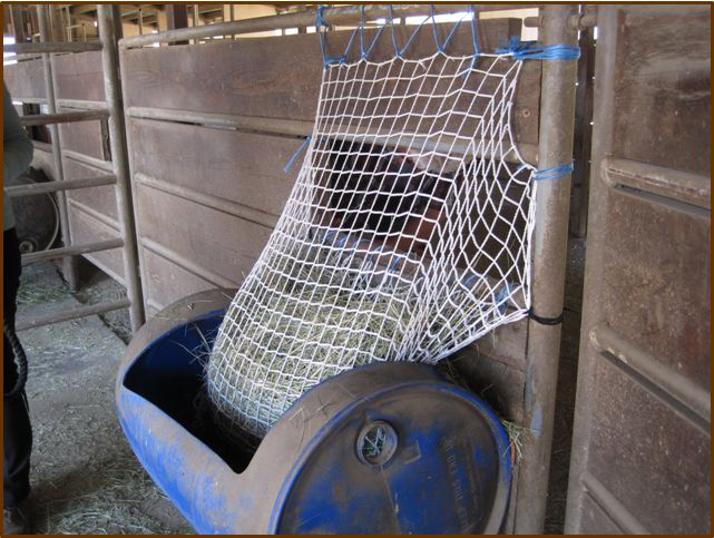how to make a horse slow hay feeder net