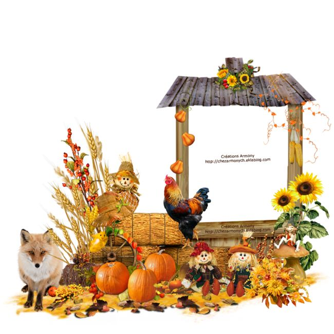 Super Tag d'automne 5