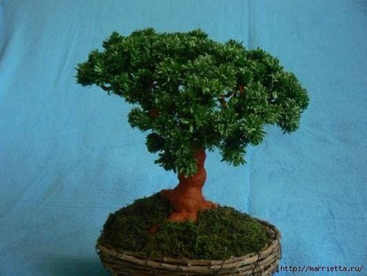 Handmade-kursy ,wzory ,tutoriale: Jak z krepiny zrobić drzewko bonsai