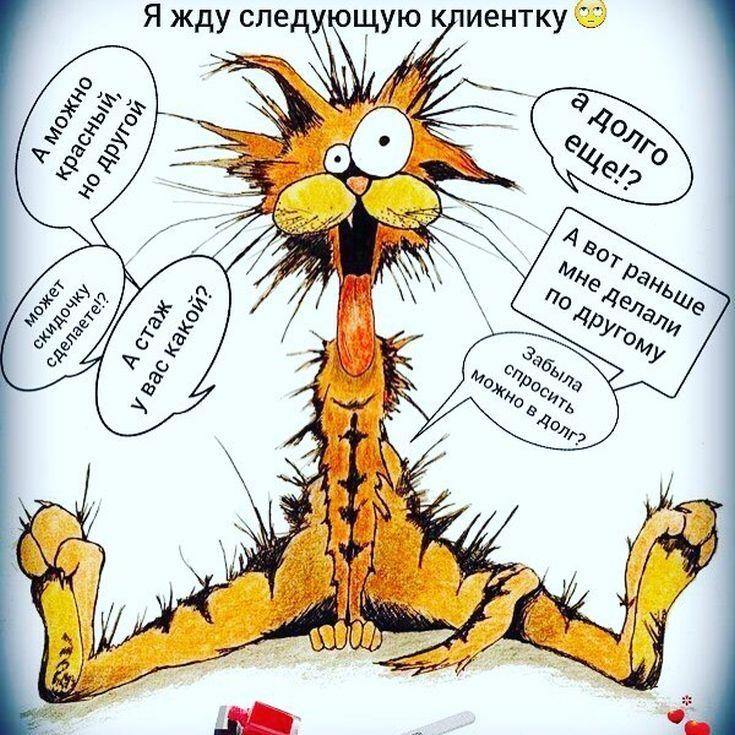 Картинки тигров, приколы про ногти и маникюр картинки