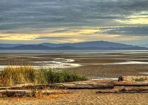 Morning Light on Parksville Beach