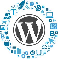We may not be the WordPress development expert, but the WordPress websites that we have designed and developed till date speak of our expertise. WordPress is a dynamic content management system with easy-to-customize framework and easy-to-upgrade architecture. At SSCSWORLD, we have grown with the consistent evolution of this CMS.