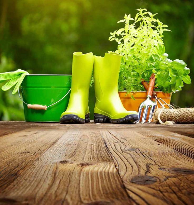 Les 16 meilleures images du tableau jardinage d coration for Jardinage decoration jardin