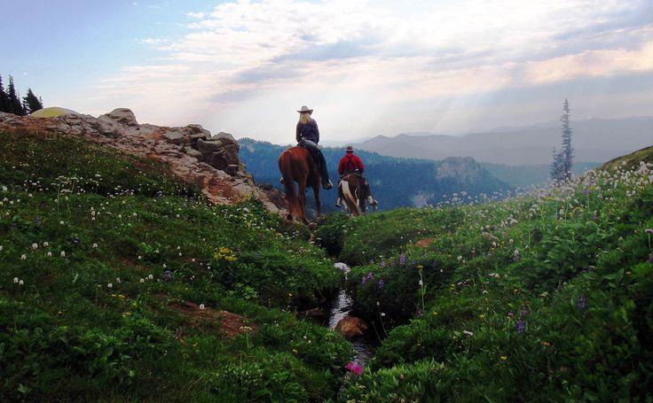 Riders in Goat Rocks Wilderness
