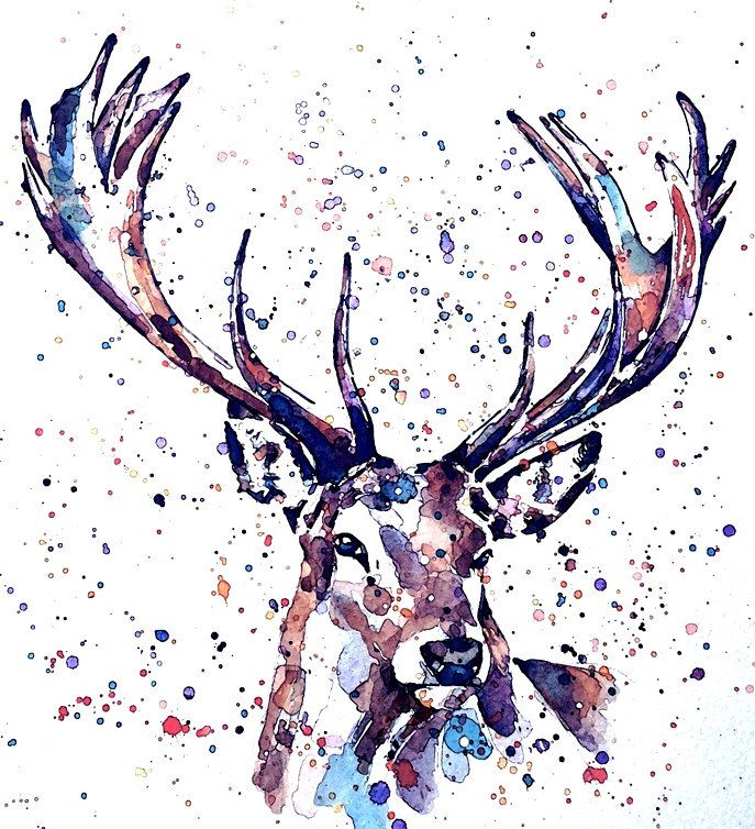 "Stag  "" Print Watercolour A3/16*12 inches by EdsWatercolours on Etsy https://www.etsy.com/uk/listing/265512525/stag-print-watercolour-a31612-inches"