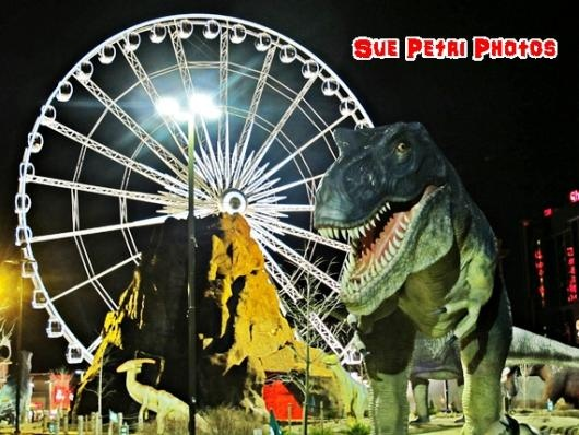 Dinosaur Photo Art ... from 'SuePetriPhotos' on Lilyshop for $55.00