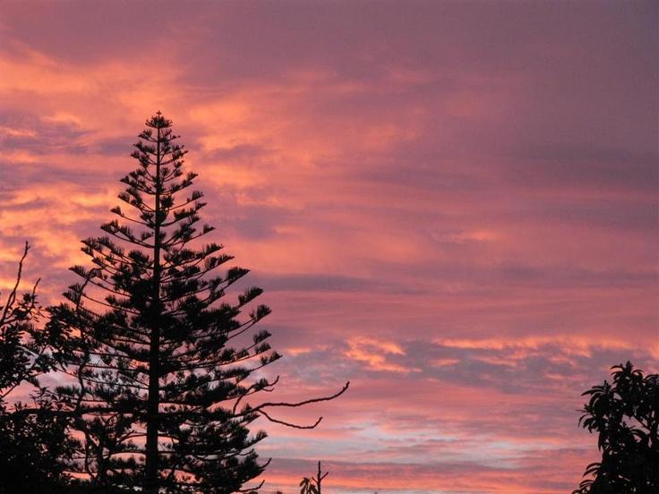 Napier evening Sky