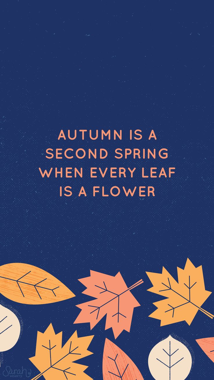 Iphone wallpaper the dress decoded - Iphone Wall Autumn Tjn