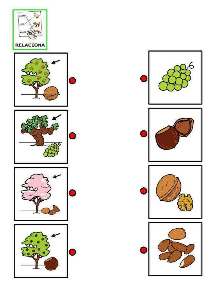 Fichas arboles y frutos
