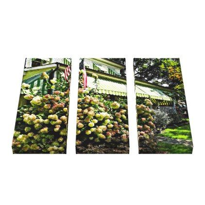 #White Hydrangeas By Green Striped Awning Canvas Print - #floral #gifts #flower #flowers